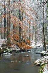 Valley Doubrava near Chotebor and Bilek. Bohemian-Moravian Highlands (Ceskomoravska Vysocina), Czech Republic