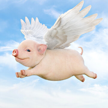 When pigs fly concept. Cute little piggy with wings flying through the air. 3d rendering
