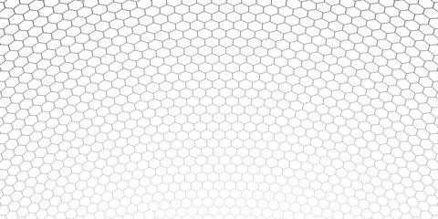 Honeycomb hexagon background pattern. Vector isolated texture. Comb seamless texture design. Vector hexagonal cell texture.