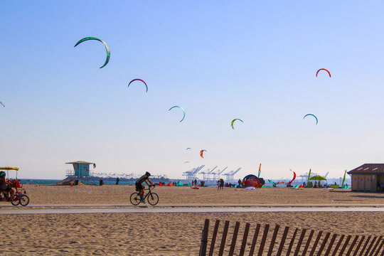 a shot of a sunny day at the beach with people flying kites and blue sky and palm trees and people riding bikes at Belmont Kite Beach in Long Beach, California
