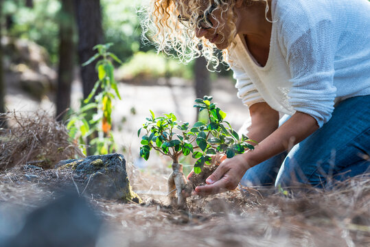 Earth's day celebration concept with happy woman planting a new tree in the forest - no deforestation and respect for the world concept - gardening activity people