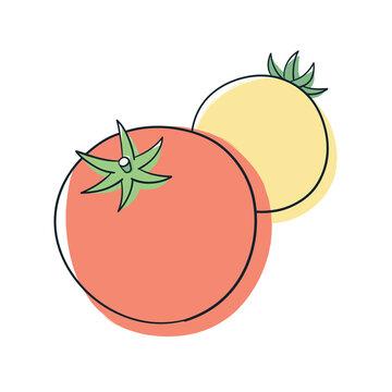 オレンジ色と黄色のトマト