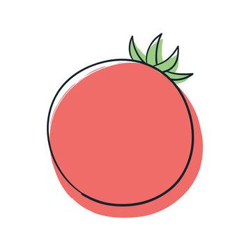 赤色のトマト
