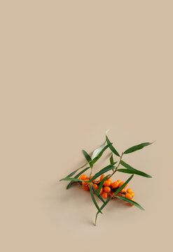 Ripe sea buckthorn berries on a beige background. Autumn natural background. Flat lay.