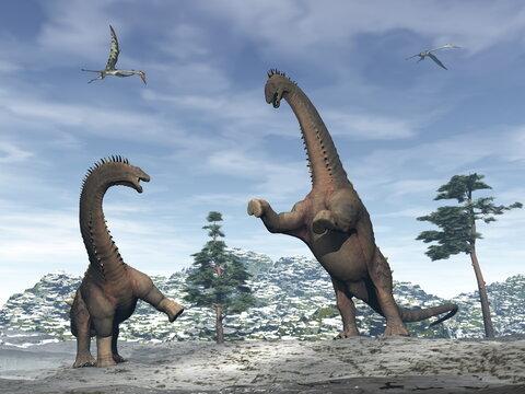 Alamosaurus dinosaurs fighting in the mountain under quetzalcoatlus flying - 3D render
