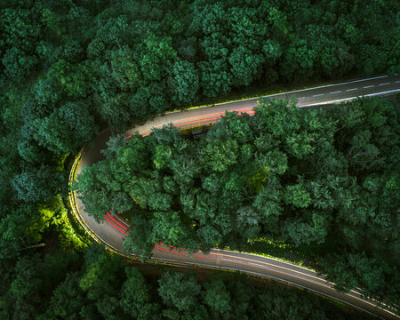 Overhead view of light tails on mountain road amidst forest