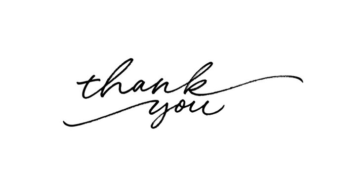 Thank you ink brush vector lettering. Thank you modern phrase handwritten vector calligraphy with swooshes. Black paint lettering isolated on white background. Postcard, greeting card, t shirt print.