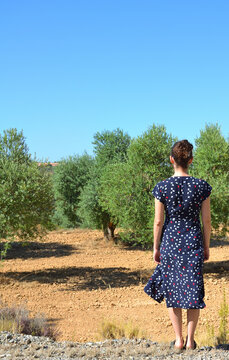 Young Woman Wearing a Blue Dress on a Olive Tree Fields