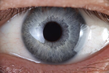 Open super macro enlargement of eyes looking at camera. Personality identification retinal scan concept.