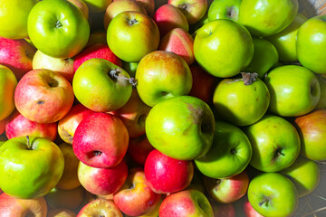Crop of apples. Green and red apples. Bright background of apples. Fruit harvesting. Fruit in the shop window. Agricultural business.