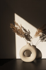 Dry pampas grass / reed in stylish vase. Shadows on the wall. Silhouette in sun light. Minimal interior decoration concept.