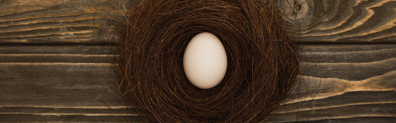 top view of fresh chicken egg in nest on wooden surface, panoramic shot