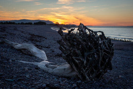 Driftwood on Blue Ancor Beach at sunset