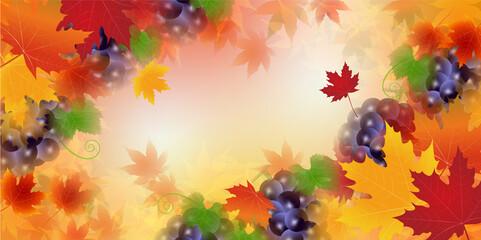 紅葉 もみじ 葡萄 背景
