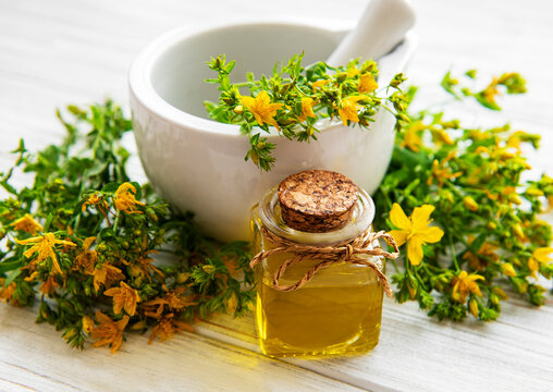 St johns wort oils, and  fresh herbs in a mortar