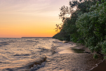 beautiful orange sunset at the sea. trees grow all along the coast of the wild beach. The sun is reflected in the surf.