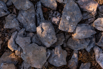 Background of various stones with different gray and white tones and with texture in the middle of nature