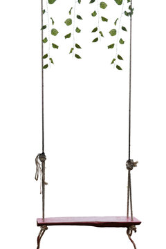 A blank wooden swing, cover with green vines on top. isolated on white background