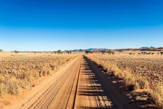 Dirt road in plain landscape at  Namibrand Nature Reserve , Namibia