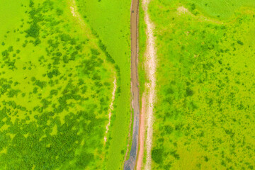 a stream flows through a green grassy landscape from above