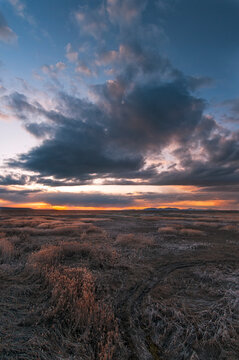 Grassland of Great Salt Lake against cloudy sky