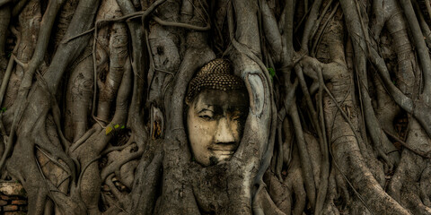 Buddha head in tree growing at Wat Mahathat