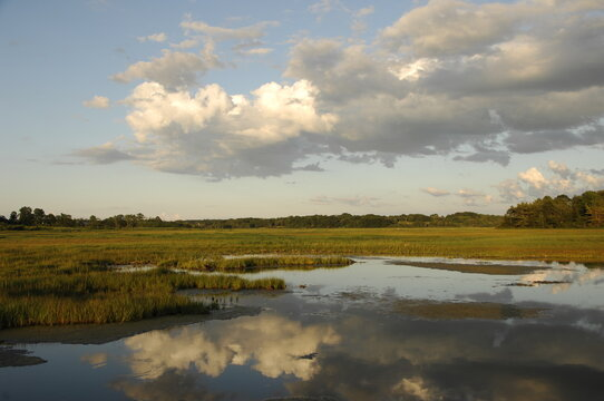 Clouds reflecting in water in Rachel Carson National Wildlife Refuge