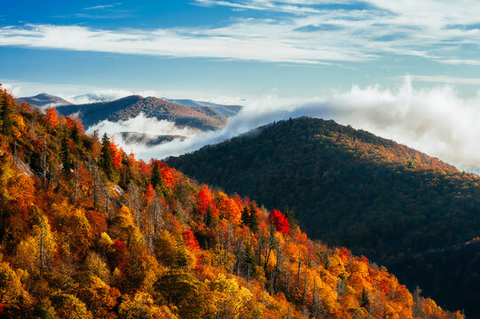 Black Balsam Knob with fall foliage in Blue Ridge Parkway