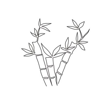 One continuous line drawing of bamboo trees for plantation logo identity. Fresh evergreen perennial flowering plant concept for plant icon. Modern single line draw design graphic vector illustration