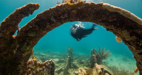 Garden Poster Shipwreck A diver explores the wreck of the City of Washington in Florida Keys National Marine Sanctuary.