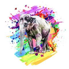 funny elephant with a rainbow