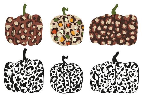 Leopard pumpkin autumn thanksgiving vector illustration. Animal print squash design. Halloween safari art