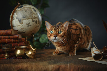 Bengal cat, vintage items, books and manuscripts on the table on a dark background. Space for your...