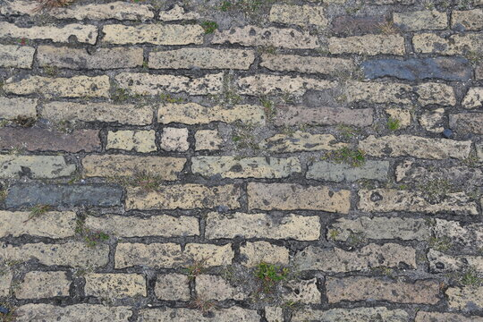 gelbe Ziegelsteine als Bodenbelag im Außenbereich mit Unkraut in den Fugen