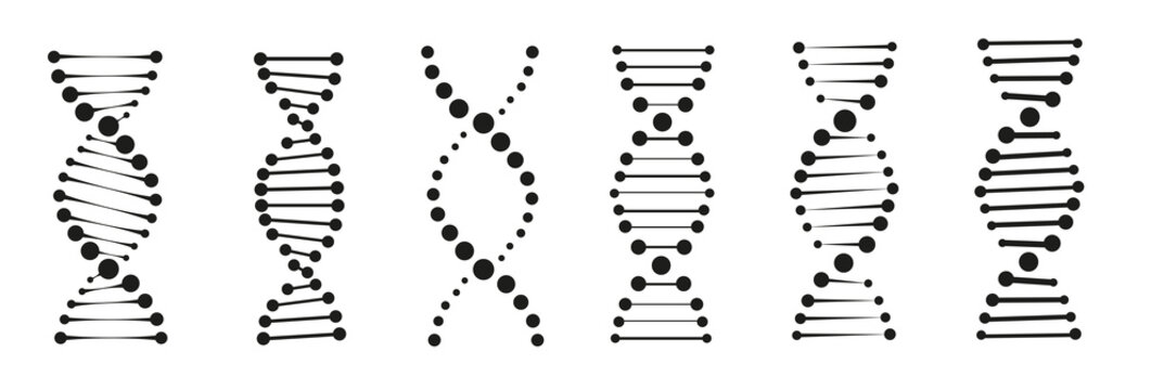 The dna icon vector illustration