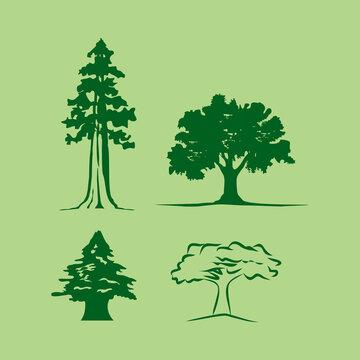 Tree silhouette cedar sequoia, others