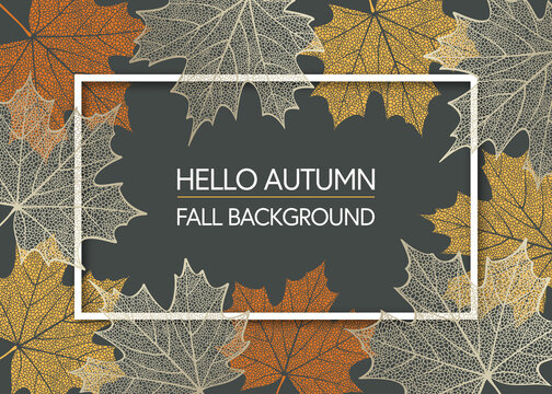 Autumn background with skeleton maple leaves. Frame made of fall leaves. Vector illustration
