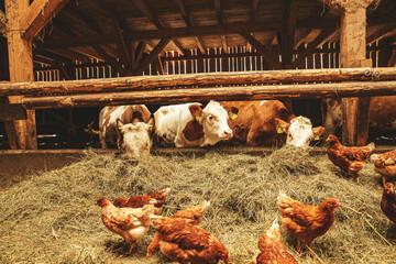 Natural rural agricultural organic farm
