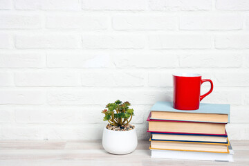 Stack of books with red mug and houseplants against a white brick wall.