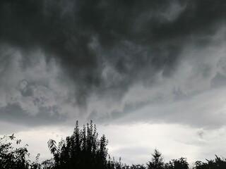 Fototapeta Groźne i piękne burzowe niebo - widok nad drzewami obraz
