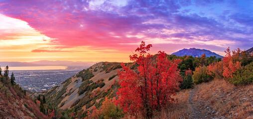 Colorful fall scene in the Wasatch Front, Utah, USA.