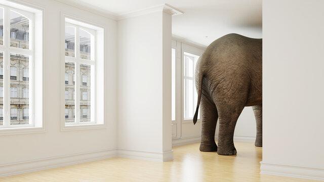 Elefant in Wohnung als Platzmangel und Haustier Konzept