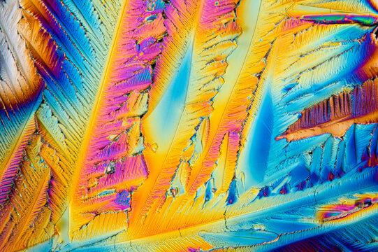 Crystalized citric acid under polarized light