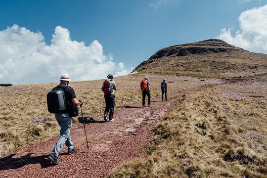 Group of mountaineers hiking