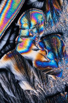 Crystalized menthol under polarized light