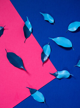 Blue leaves on pink paper