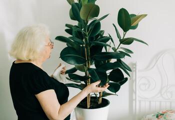 Senior woman taking care of home plant, natural light Papier Peint