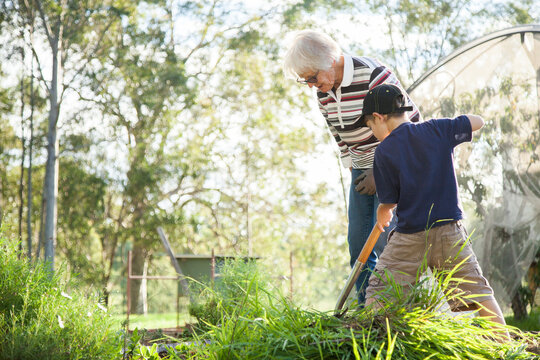 Grandson and granny gardening together in the backyard
