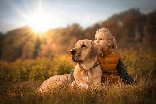 Beste Freunde - ein Kind umarmt seinen Hund, einen Broholmer, und beide genießen in der Natur den Sonnenuntergang an einem Herbsttag