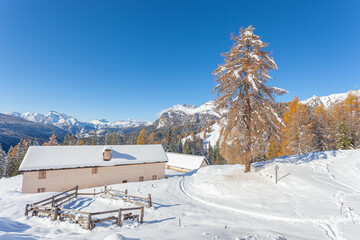 Alpine hut in front of an awesome winter scenery, Val Fiorentina, Dolomites, Italy. Concept: winter landscapes, Christmas atmosphere, Unesco world heritage